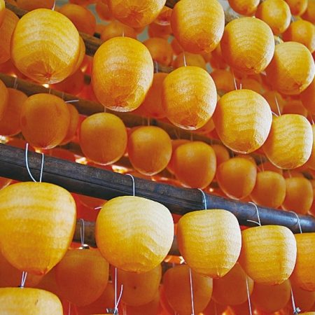 The association of dried persimmon makers